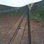 FD 2019 de W4KAZ, Dripage, light rain, after lightning stopped